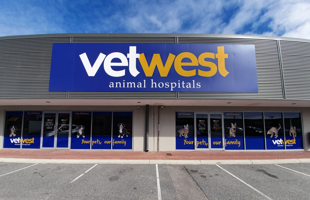 Vetwest Currambine Veterinary Clinic   Vetwest Animal