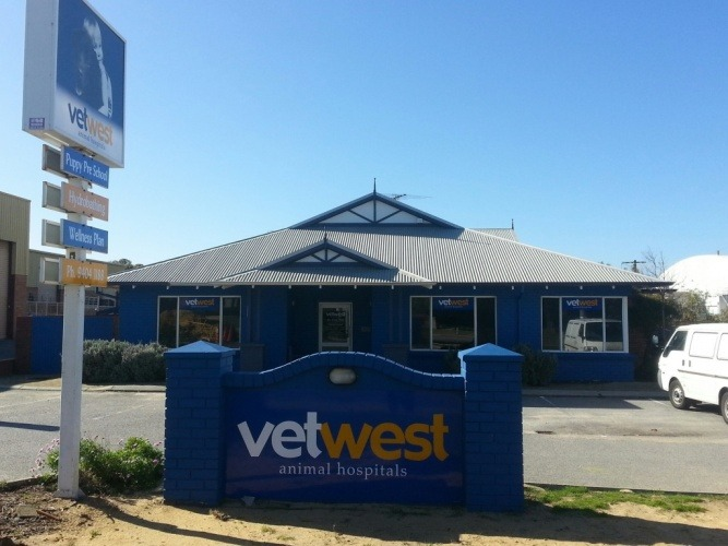 vetwest-animal-hospital-in-bibra-lake