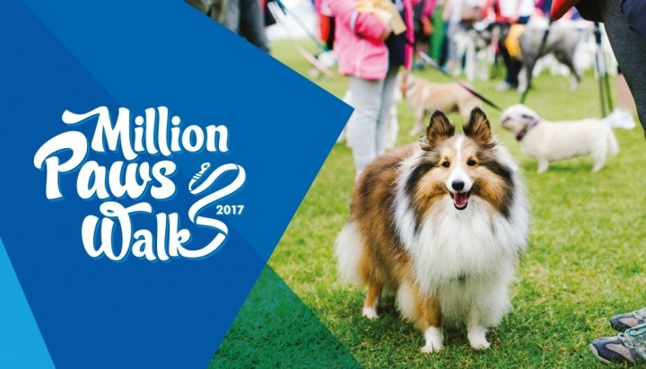million-paws-walk-poster