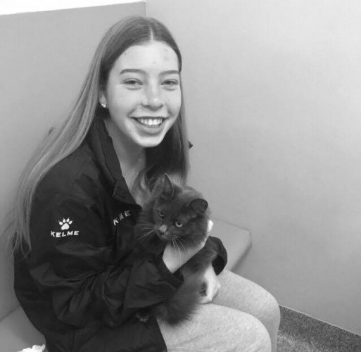 dory-the-black-cat-reunited-with-owner-thanks-to-microchipping
