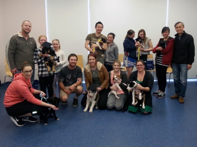 vetwest-cockburn-puppy-preschool-graduate-class-july-30th