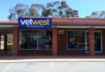 vetwest-animal-hospital-in-carine-duncraig