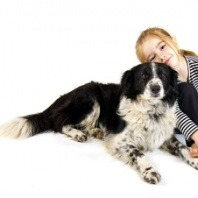 border collie and girl
