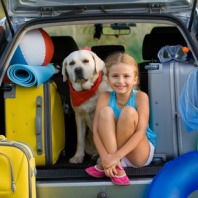 traveling with pet dog