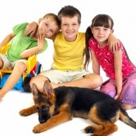 children with their dog