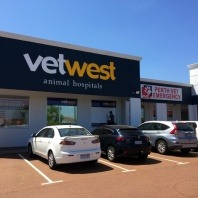 vetwest-yokine-vet-location