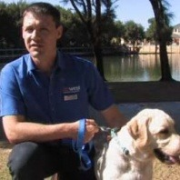 dr-chad-marriot-talks-about-how-to-keep-our-pets-cool-this-summer