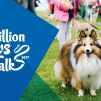 million-paws-walk-poster-not-all-pups-have-access-to-puppy-vaccinations-dog-desexing-heartworm-in-dogs-treatment