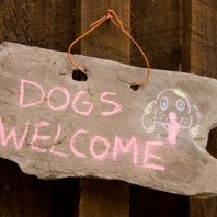 dogs-welcome-sign