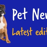 pet-news-latest-edition-vetwest-news-on-parvovirus-dog-heat-cycle-hip-dysplasia-on-dogs-pyometra-cat-vomiting-puppy-vaccinations-dog-desexing-coprophagia-ringworm-in-cats-heartworm-in-cats