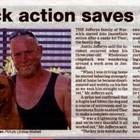 thor-a-rhodesian-ridgeback-on-the-newspaper-for-surviving-a-snake-bite